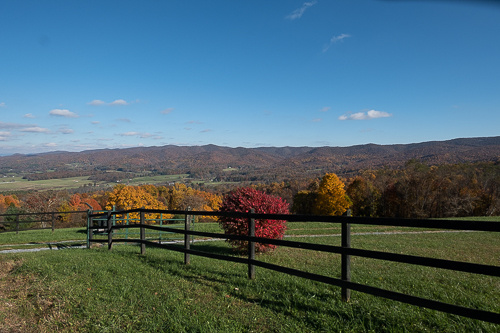 Shady Valley TN (9 of 10).jpg